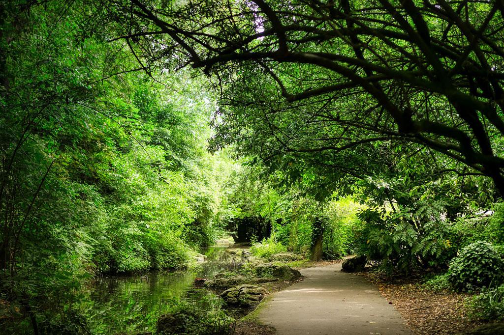 イメージ画像 イギリス庭園 公園