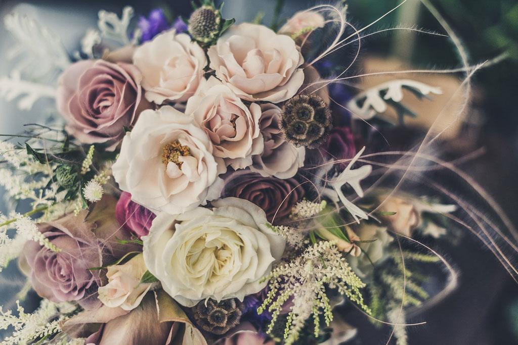 イメージ画像 花 薔薇 高慢と偏見